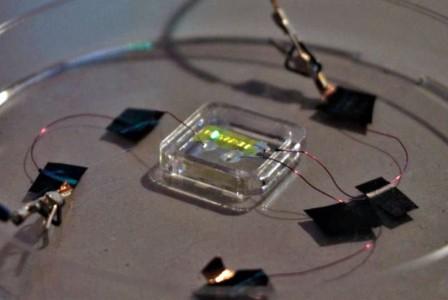 Scientists create smart OLED tattoos